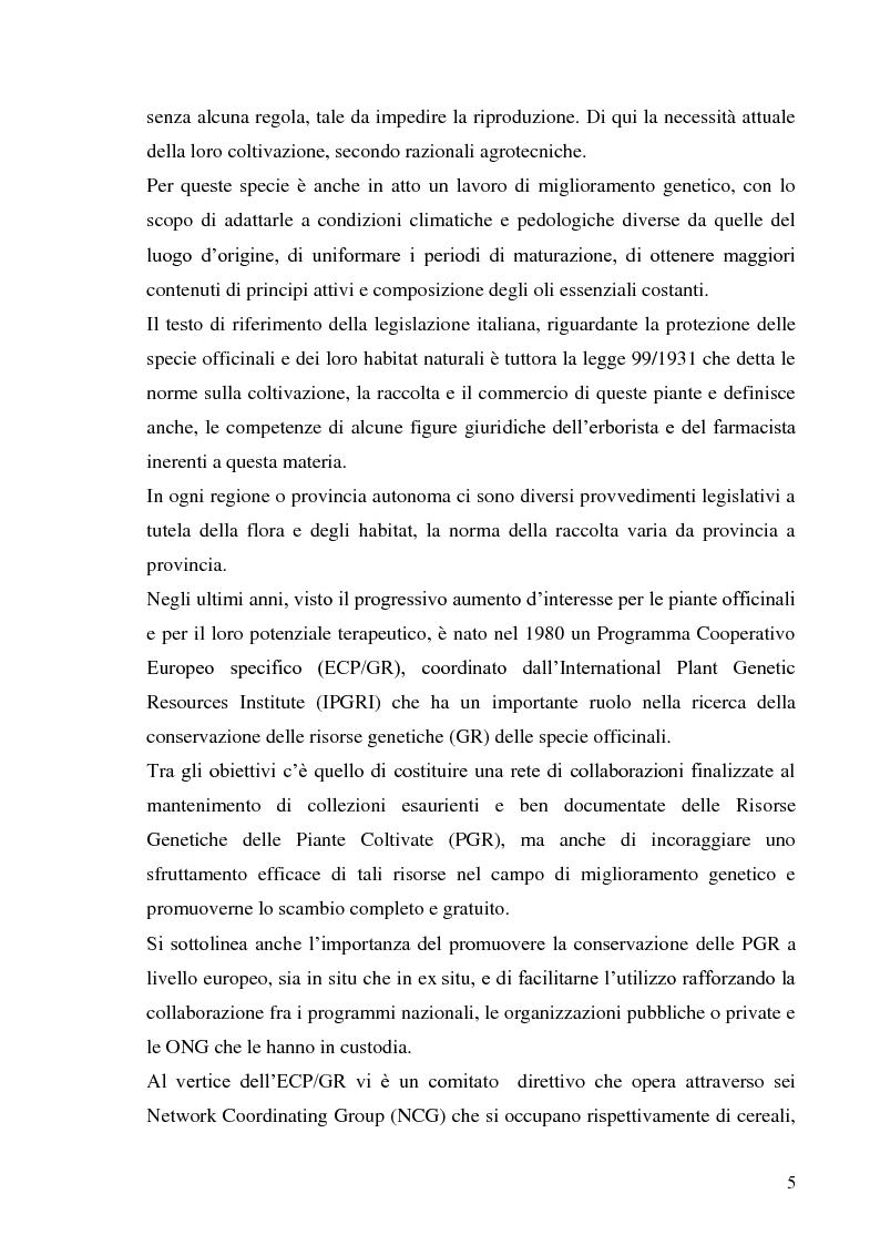 Anteprima della tesi: Indagine conoscitiva sulla flora spontanea a destinazione erboristica nel Parco Nazionale dell'Alta Murgia, Pagina 6