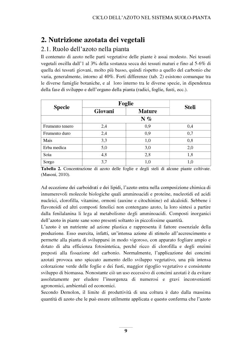 Anteprima della tesi: Riduzione e prevenzione dell'inquinamento delle acque dai nitrati provenienti da fonti agricole, Pagina 6