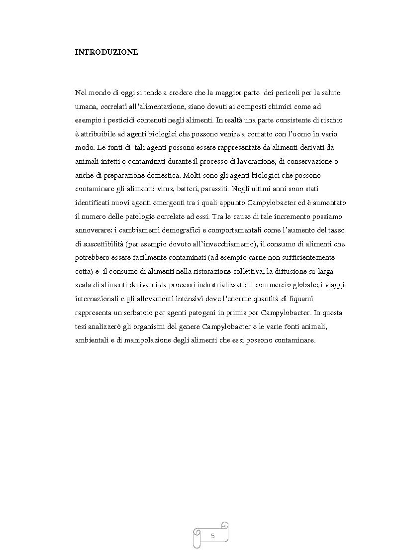 Anteprima della tesi: Campylobacter nella catena alimentare, Pagina 2