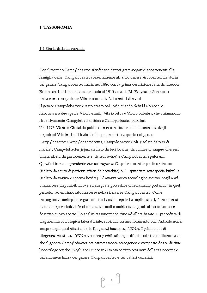 Anteprima della tesi: Campylobacter nella catena alimentare, Pagina 3