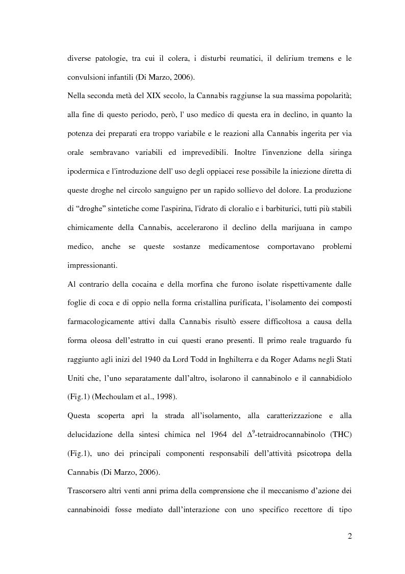 Anteprima della tesi: Endocannabinoidi e consolidamento della memoria emozionale nel ratto: meccanismi neurobiologici, Pagina 3