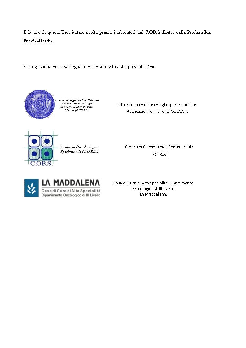 Anteprima della tesi: Studio dell'Interattoma della Proteina PAR-6 in Cellule di Carcinoma Mammario della linea 8701-BC, Pagina 2
