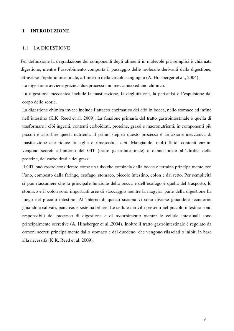 Anteprima della tesi: Digestione gastrica in vitro delle proteine di frumento, Pagina 3