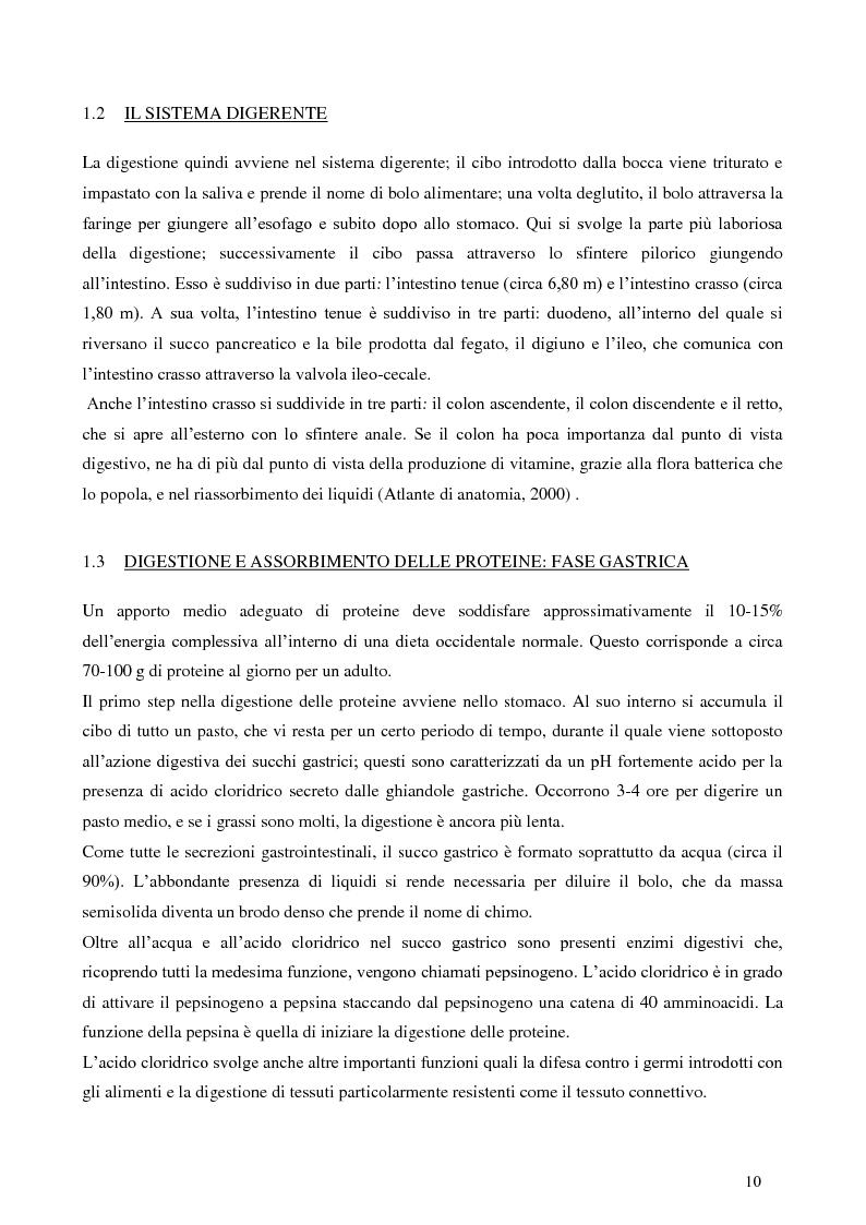 Anteprima della tesi: Digestione gastrica in vitro delle proteine di frumento, Pagina 4