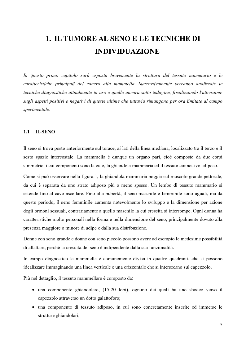 Anteprima della tesi: Analisi della fattibilità e valutazione del rischio di tecniche diagnostiche basate su radar UWB per l'individuazione del tumore al seno, Pagina 2