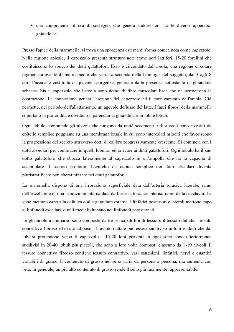 Anteprima della tesi: Analisi della fattibilità e valutazione del rischio di tecniche diagnostiche basate su radar UWB per l'individuazione del tumore al seno, Pagina 3