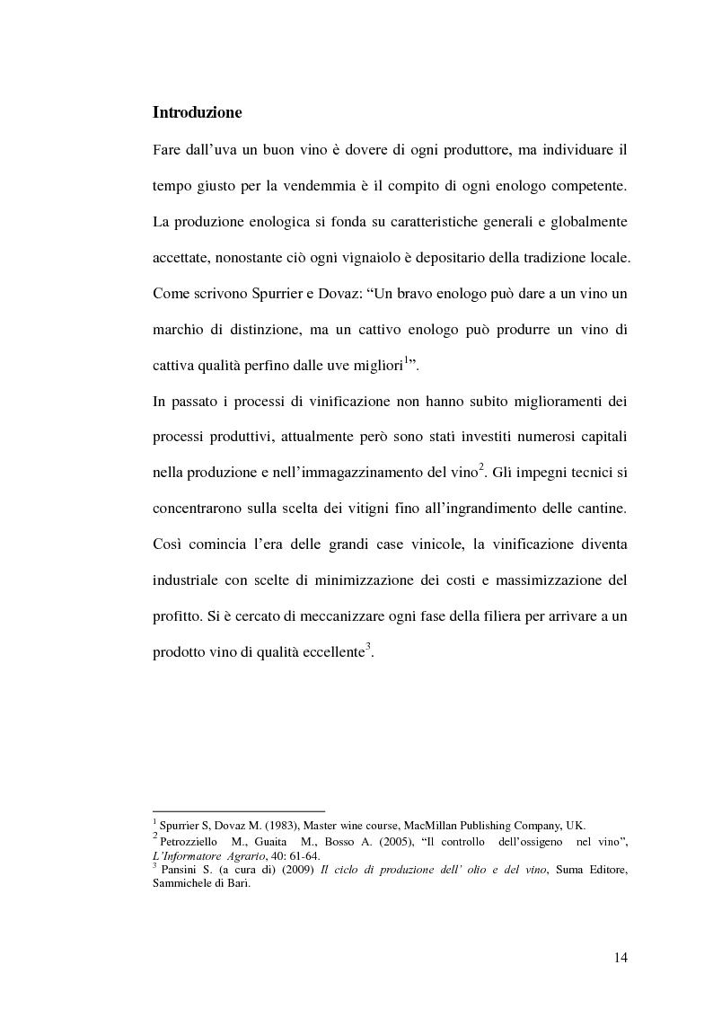 Anteprima della tesi: La gestione della produzione vinicola. Il caso Cantine Due Palme, Pagina 7