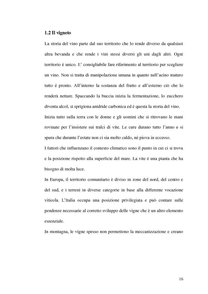 Anteprima della tesi: La gestione della produzione vinicola. Il caso Cantine Due Palme, Pagina 9