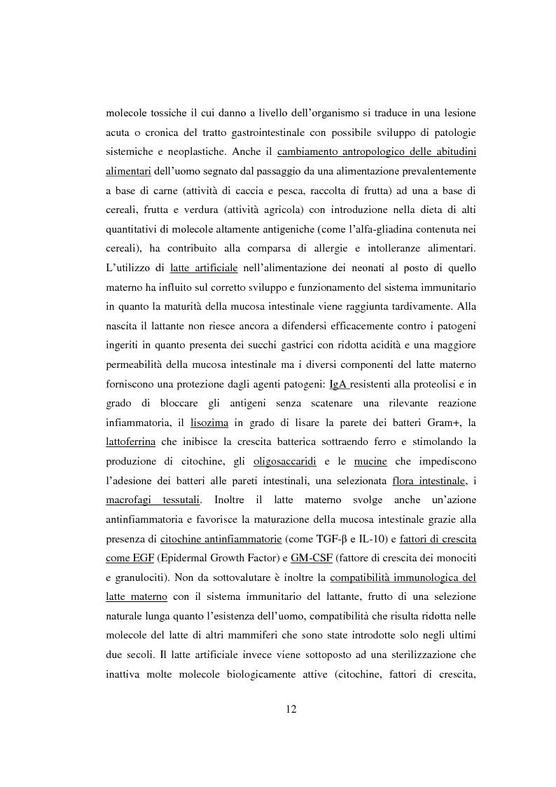Anteprima della tesi: Reazioni avverse agli alimenti: la sensibilità al glutine. Le nuove ipotesi scientifiche e il ruolo dell'infermiere nell'educazione terapeutica del paziente., Pagina 9