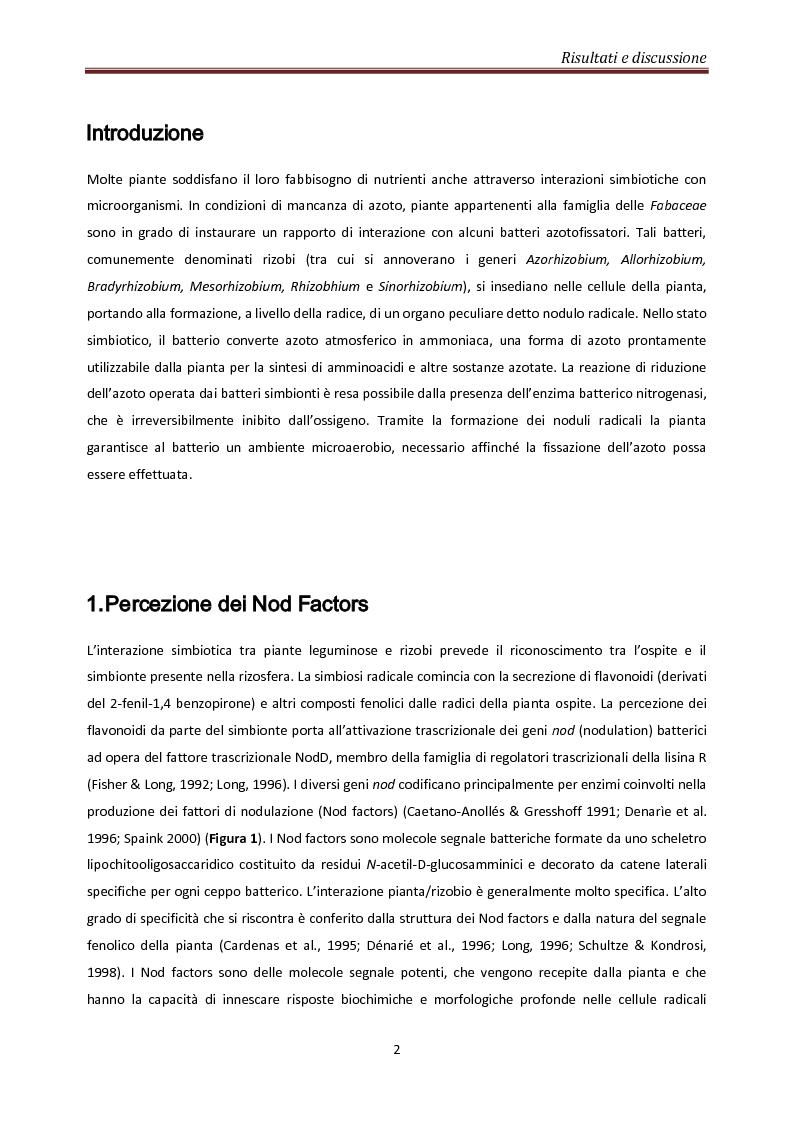 Anteprima della tesi: Coinvolgimento di MtN5 nella Trasduzione del Segnale nella Simbiosi Sinorhizobium meliloti – Medicago truncatula, Pagina 2