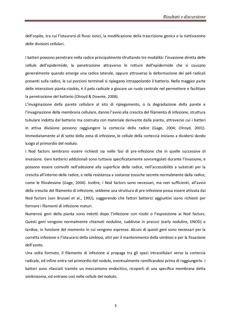 Anteprima della tesi: Coinvolgimento di MtN5 nella Trasduzione del Segnale nella Simbiosi Sinorhizobium meliloti – Medicago truncatula, Pagina 3