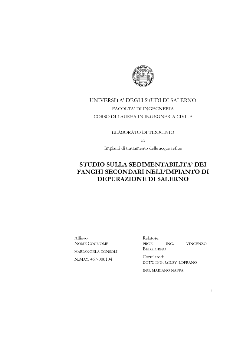 Anteprima della tesi: Studio sulla sedimentabilità dei fanghi secondari nell'impianto di depurazione di Salerno, Pagina 1