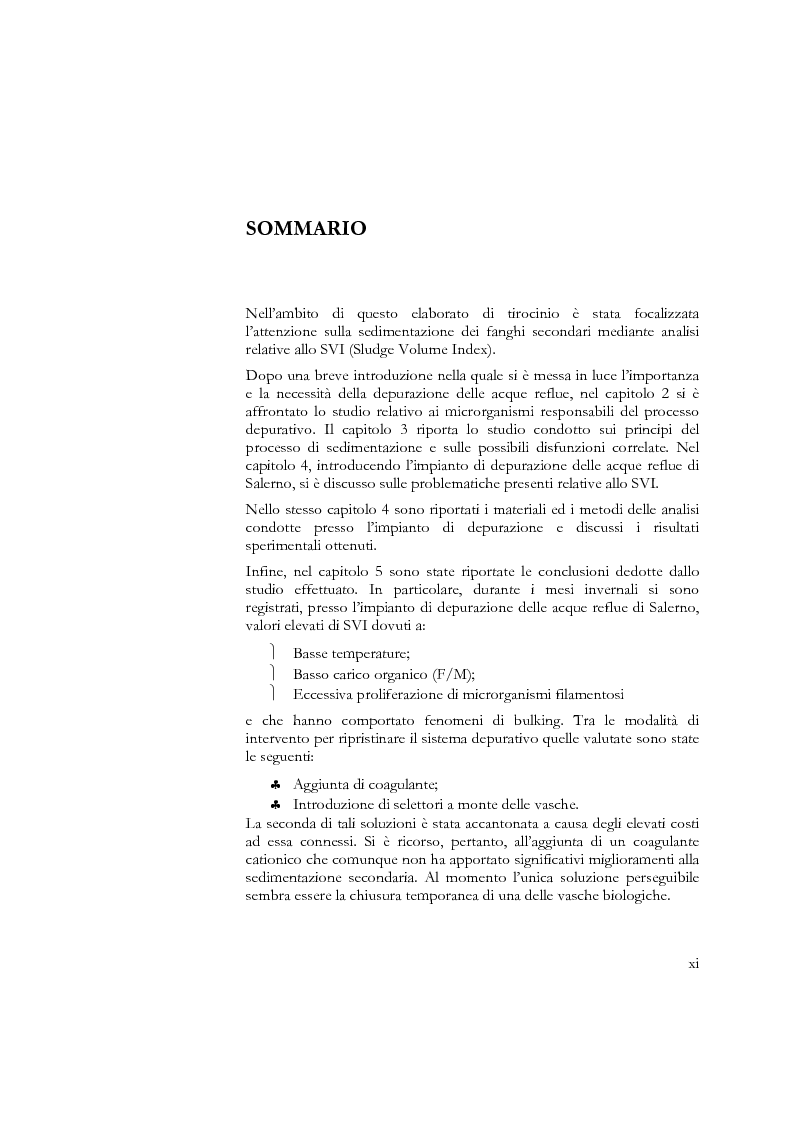 Anteprima della tesi: Studio sulla sedimentabilità dei fanghi secondari nell'impianto di depurazione di Salerno, Pagina 2