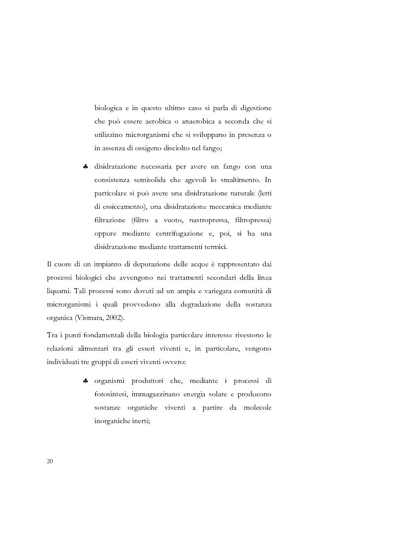 Anteprima della tesi: Studio sulla sedimentabilità dei fanghi secondari nell'impianto di depurazione di Salerno, Pagina 7