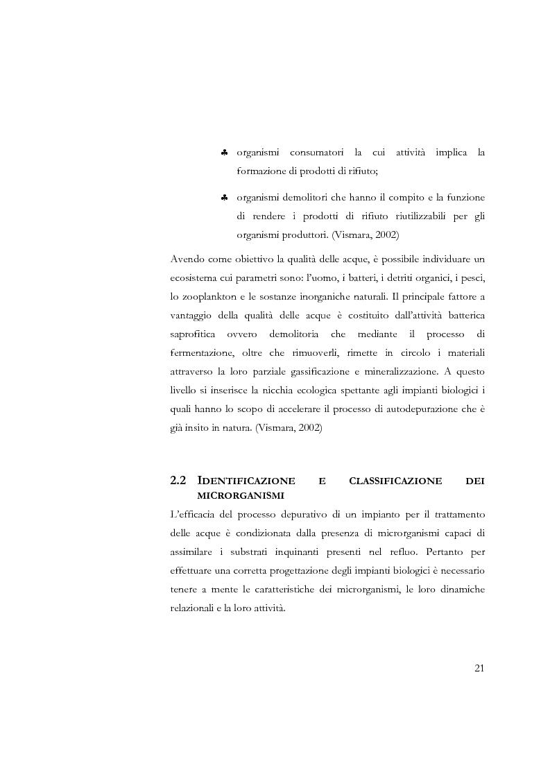 Anteprima della tesi: Studio sulla sedimentabilità dei fanghi secondari nell'impianto di depurazione di Salerno, Pagina 8