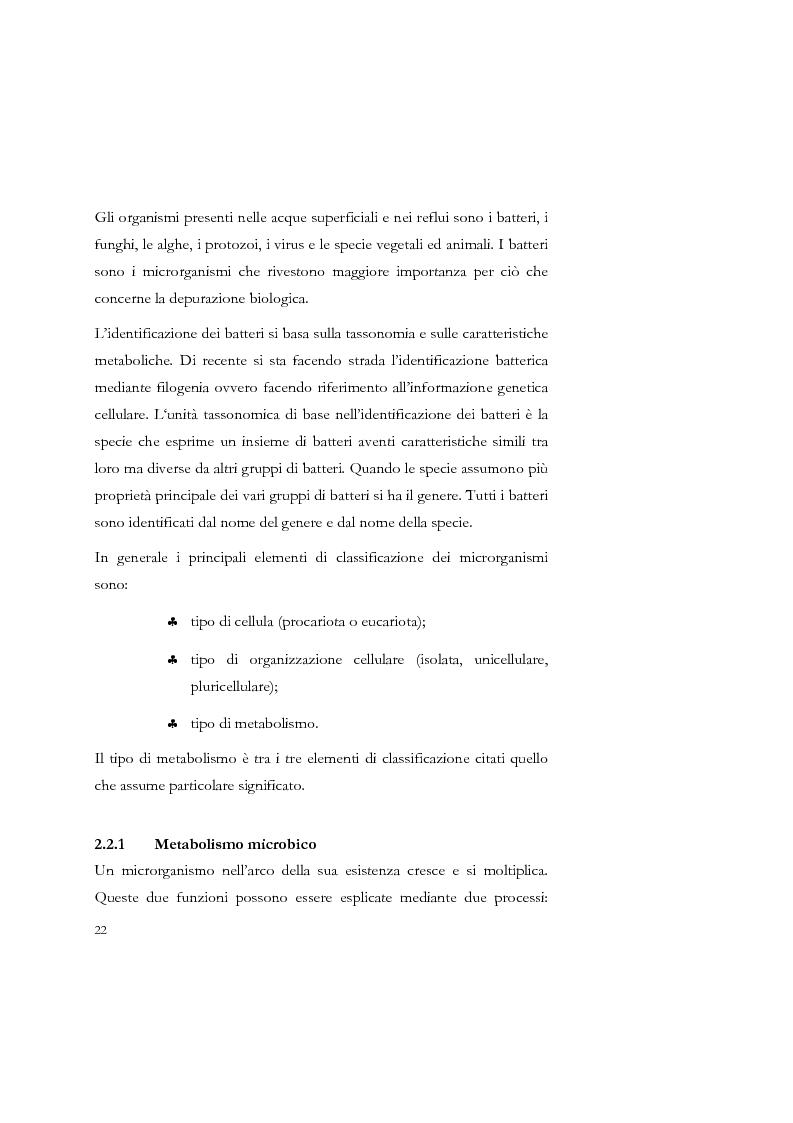Anteprima della tesi: Studio sulla sedimentabilità dei fanghi secondari nell'impianto di depurazione di Salerno, Pagina 9