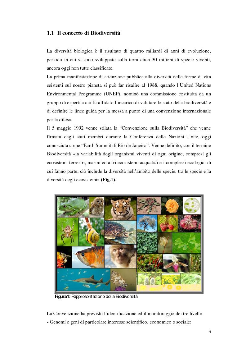 Anteprima della tesi: Biodiversità molecolare in ecotipi di cicerchia (Lathyrus sativus L.), Pagina 2