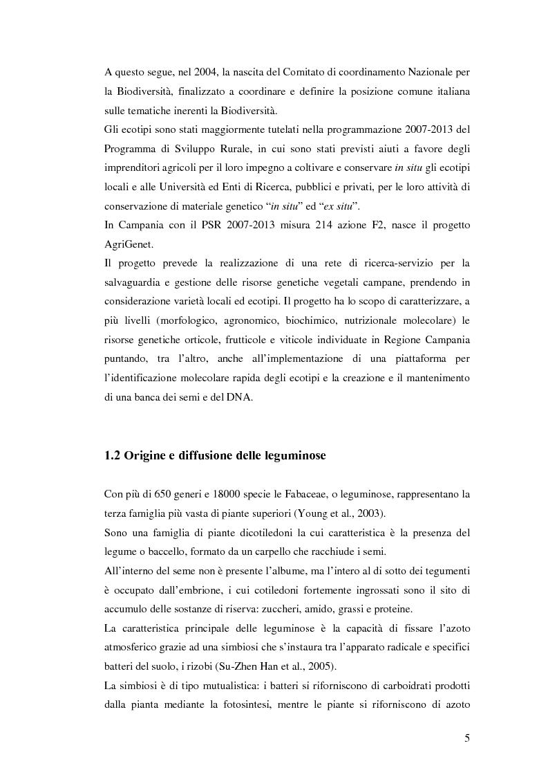Anteprima della tesi: Biodiversità molecolare in ecotipi di cicerchia (Lathyrus sativus L.), Pagina 4
