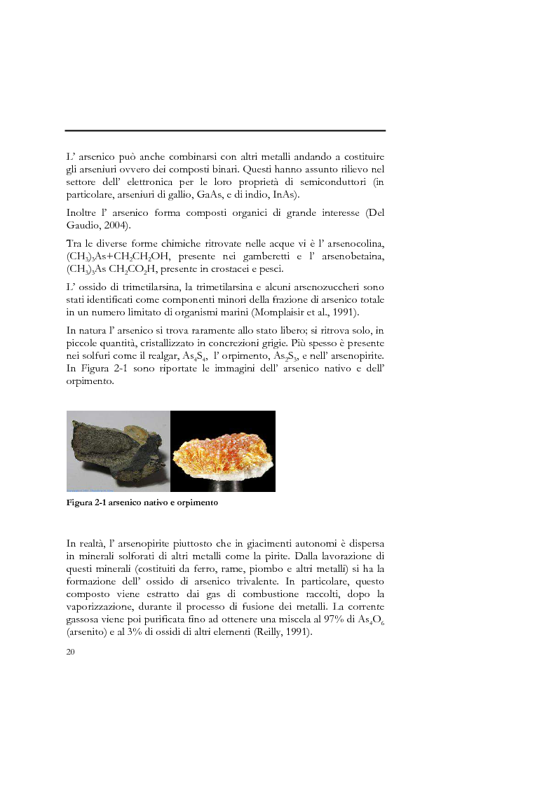 Anteprima della tesi: Indagine sull'applicabilità del chitosano nella rimozione di ioni arseniato dalle acque destinate al consumo umano, Pagina 8