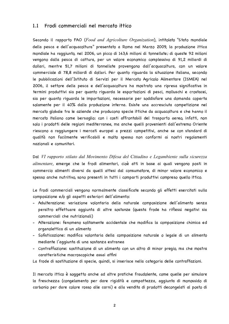 Anteprima della tesi: Identificazione di specie ittiche tramite amplificazione del gene per l'rRNA 5S al fine di rilevare frodi tassonomiche, Pagina 5