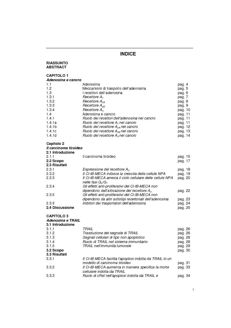 Indice della tesi: Il sistema adenosinico: principali targets molecolari ad attività anti-tumorale, Pagina 1