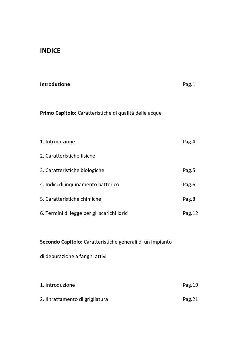 Indice della tesi: Aspetti gestionali di un impianto di depurazione di acque reflue civili, Pagina 1
