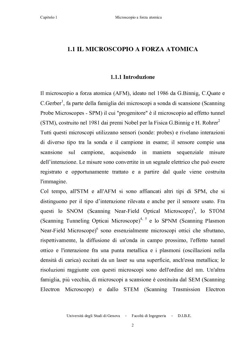 Anteprima della tesi: Utilizzo di microleve in silicio per applicazioni biosensoristiche, Pagina 6