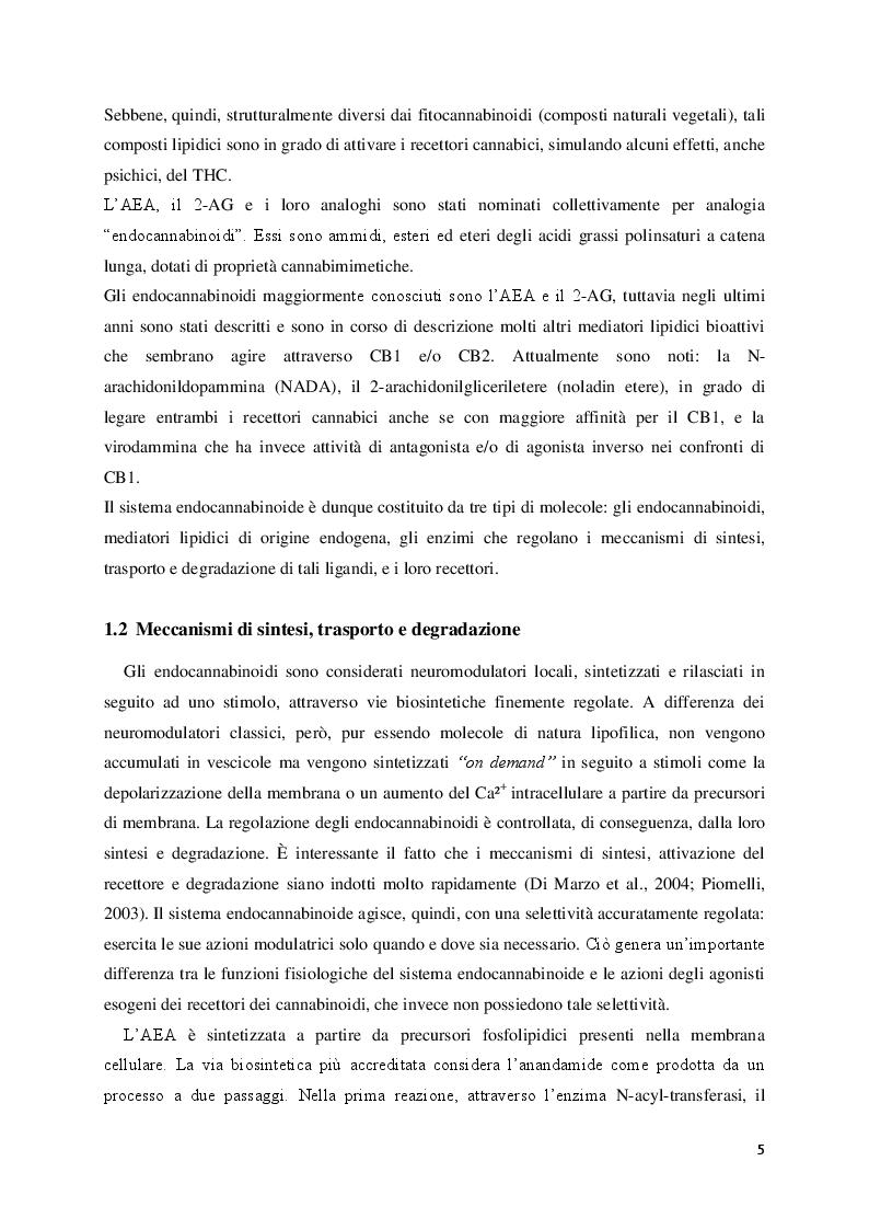 Estratto dalla tesi: Ruolo del sistema endocannabinoide nel controllo del metabolismo energetico