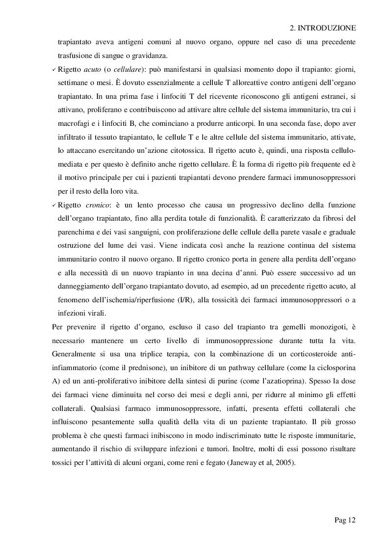 Estratto dalla tesi: Survivin protegge il rene trapiantato dai danni da ischemia/riperfusione (I/R)