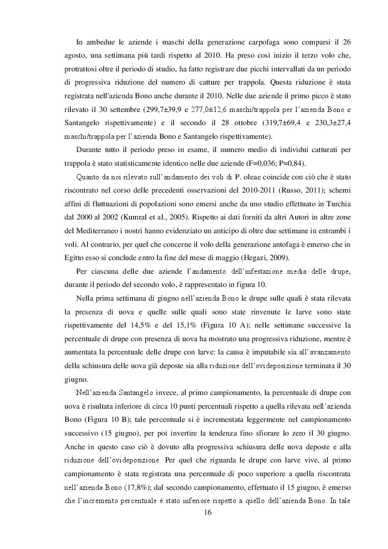 Estratto dalla tesi: Osservazioni bioetologiche su Prays oleae (Bernard) (Lepidoptera, Yponomeutidae) e determinazione dell'indice di riduzione