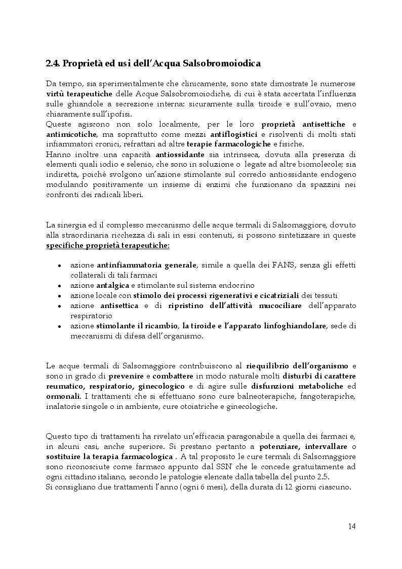 Estratto dalla tesi: Linea dermocosmetica delle Terme di Salsomaggiore S.p.A.: l'esposizione solare e lo studio di un prodotto a base di acqua termale, in sinergia con un complesso attivatore dell'abbronzatura