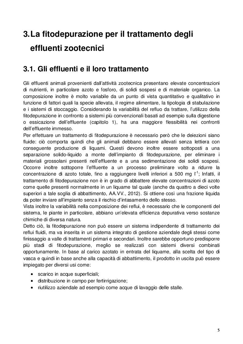 Estratto dalla tesi: La fitodepurazione per il trattamento degli effluenti zootecnici