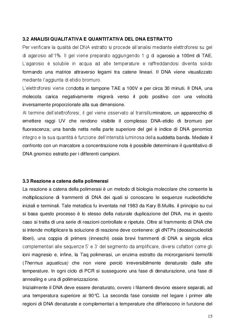 Estratto dalla tesi: Il Dna barcoding per l'identificazione delle piante aromatiche commerciali