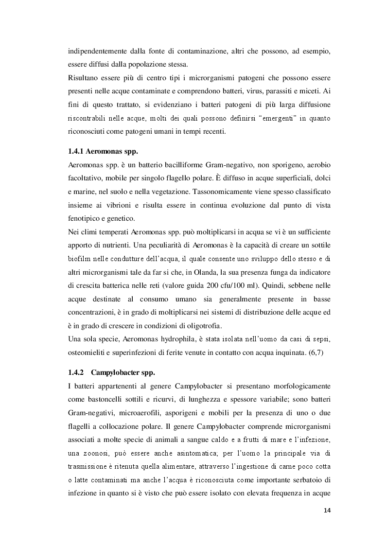 Estratto dalla tesi: L'analisi microbiologica delle acque destinate al benessere dell'uomo: la diffusione di Legionella pneumophila nelle strutture dell'Emilia-Romagna