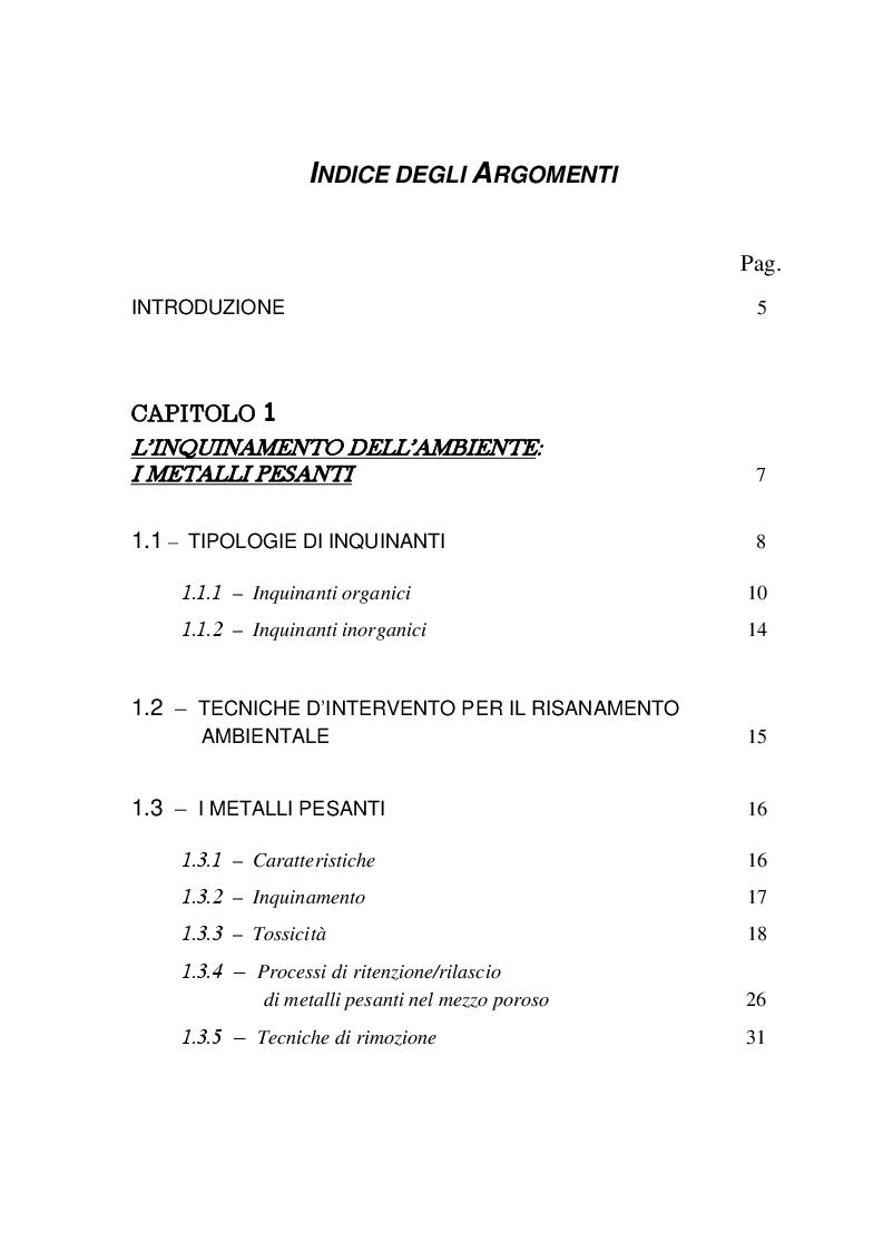 Indice della tesi: Contaminazione da metalli pesanti: Verifica dell'efficacia di PRB in fibra di ginestra e valutazione degli effetti sul DNA, Pagina 1