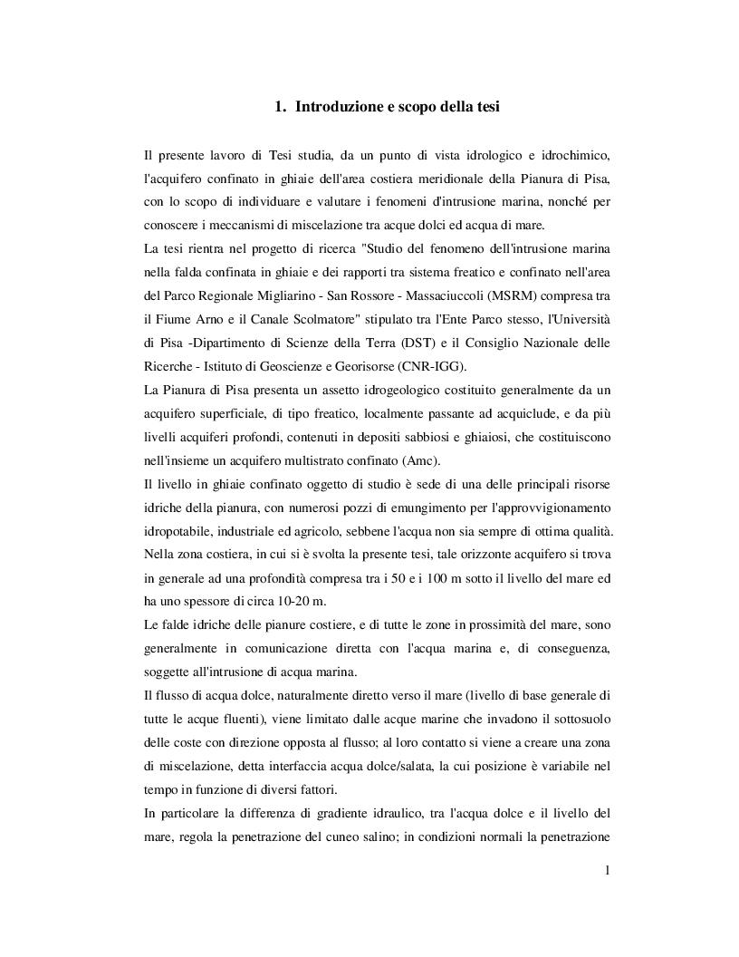 Estratto dalla tesi: L'acquifero confinato in ghiaie della Pianura di Pisa: nuovi dati idrogeologici e geochimici prodotti nell'area costiera e valutazioni sul fenomeno dell'intrusione marina.