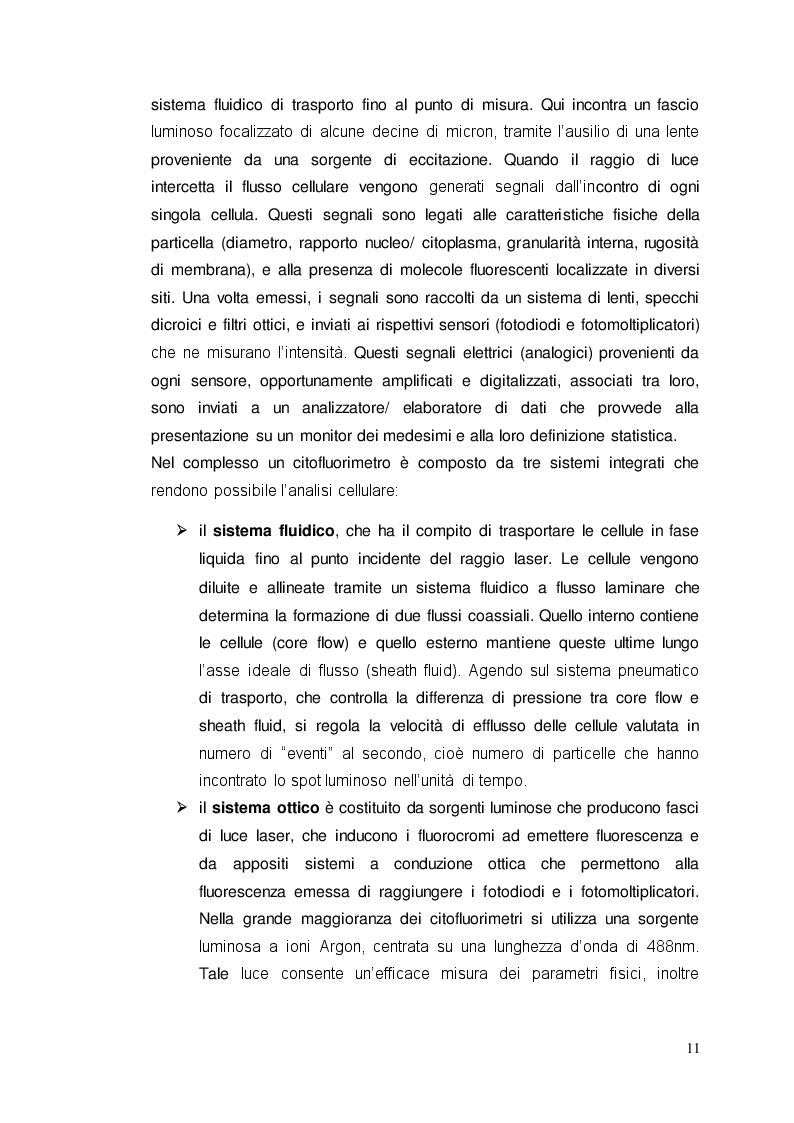 Estratto dalla tesi: Il Contaglobuli automatico ''ADVIA 2120''