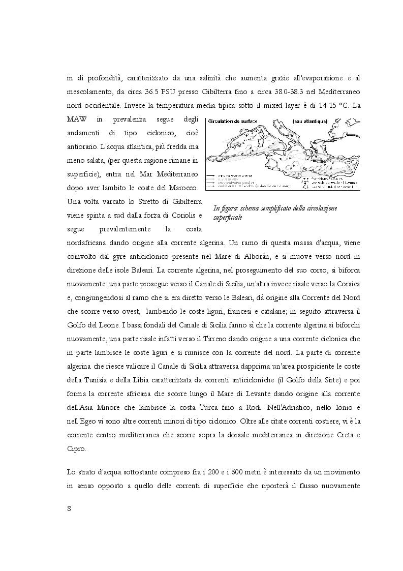 """Estratto dalla tesi: Gli effetti dell'""""Eastern Mediterranean Transient""""  nel Mediterraneo Occidentale"""