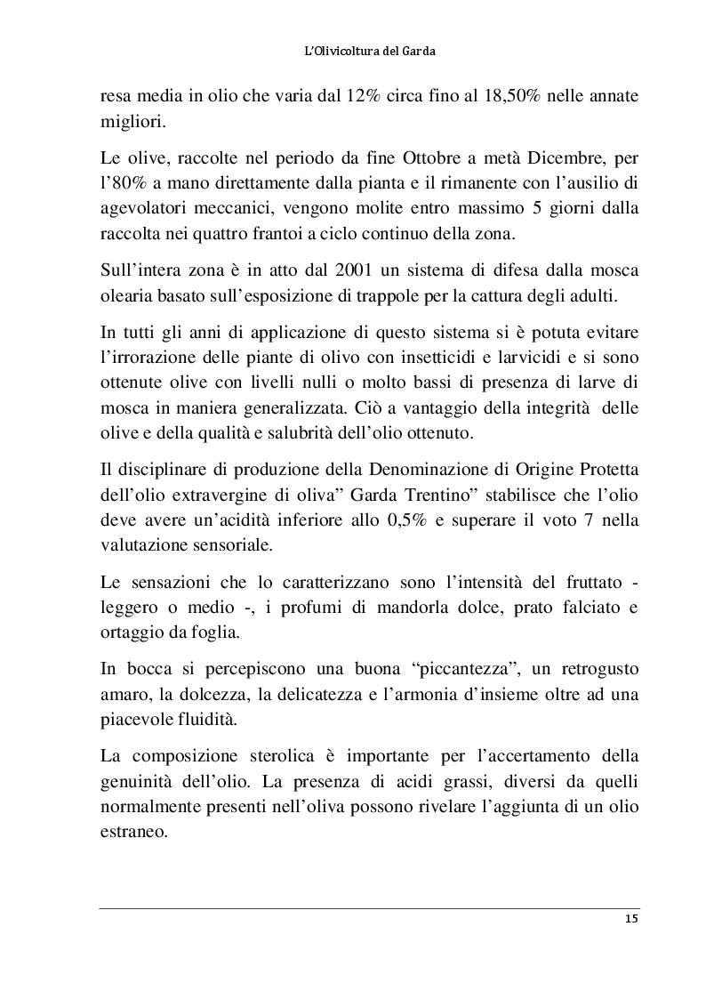 Anteprima della tesi: L'olivicoltura del Garda, Pagina 10