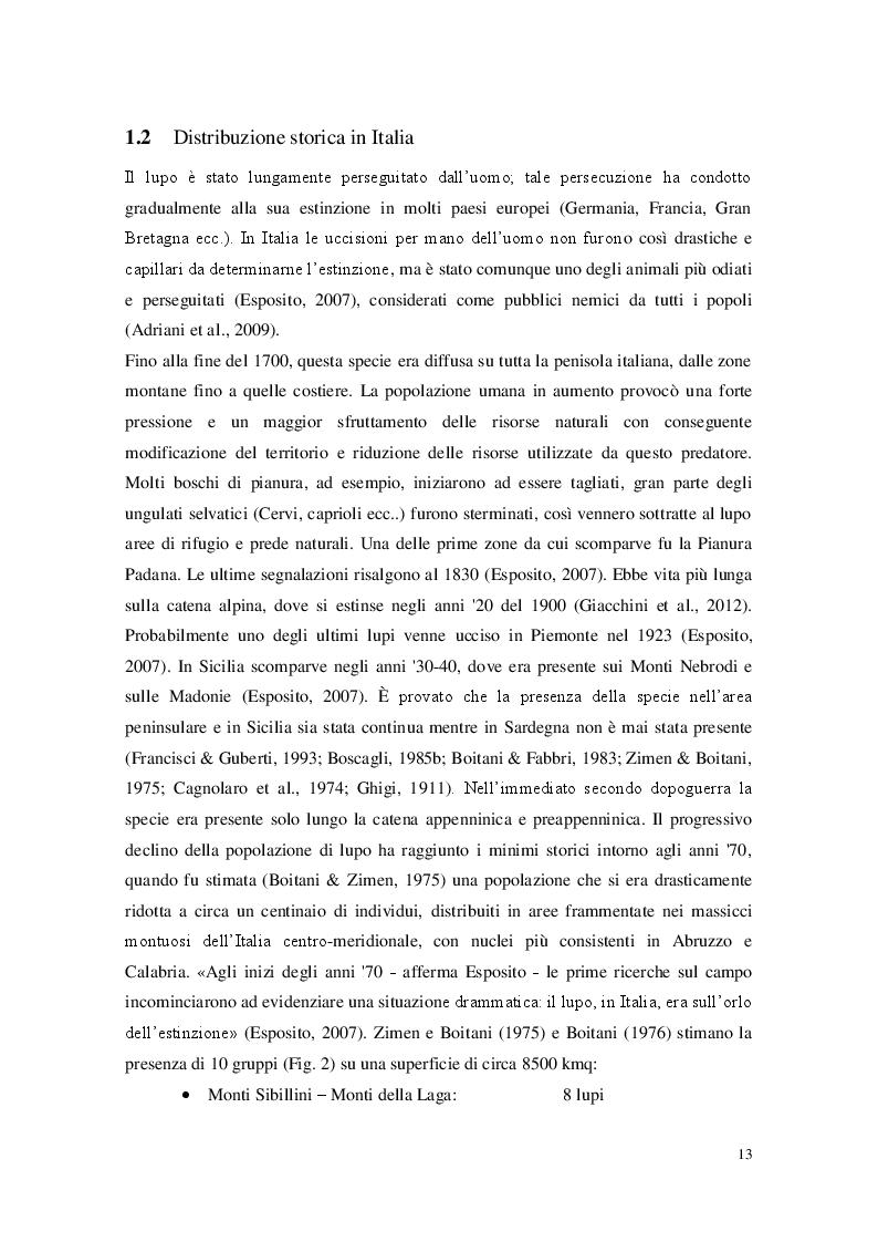 Estratto dalla tesi: Presenza del lupo (Canis lupus) nel settore Marchigiano del Parco Nazionale del Gran Sasso e Monti della Laga e aree contigue