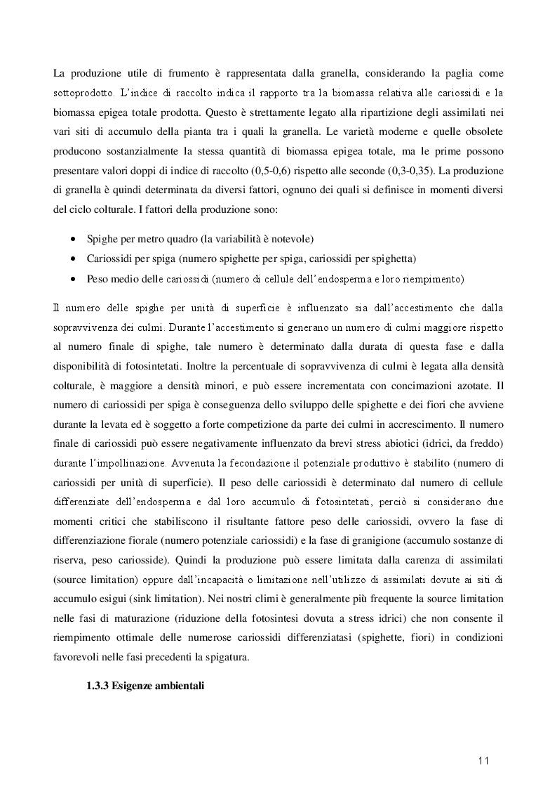 Estratto dalla tesi: Effetti dell'avvicendamento colturale e delle fertilizzazioni organiche in frumento biologico