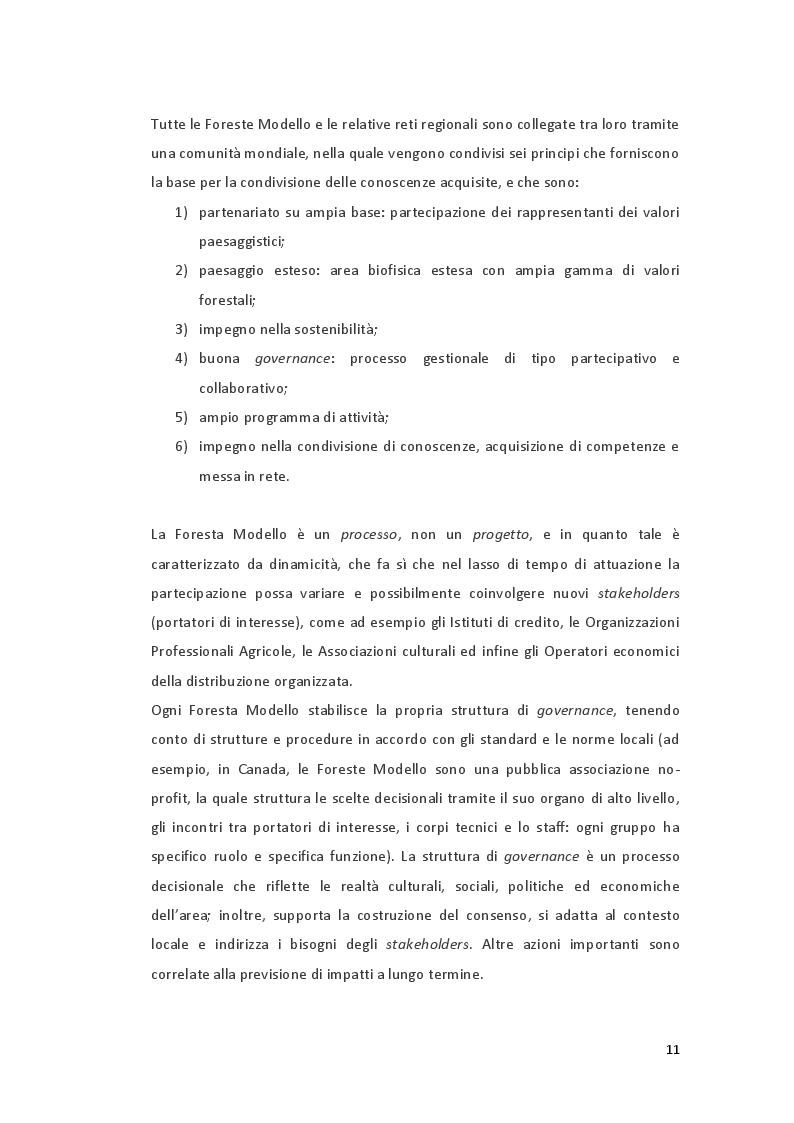 Estratto dalla tesi: Tutela ambientale e gestione collettiva: l'esempio delle Foreste Modello