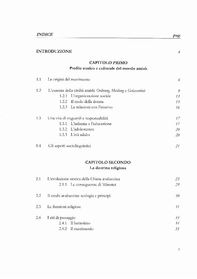 Indice della tesi: OLD OLDER AMISH. Custodi di tradizione e conservatori dell'ambiente, Pagina 1