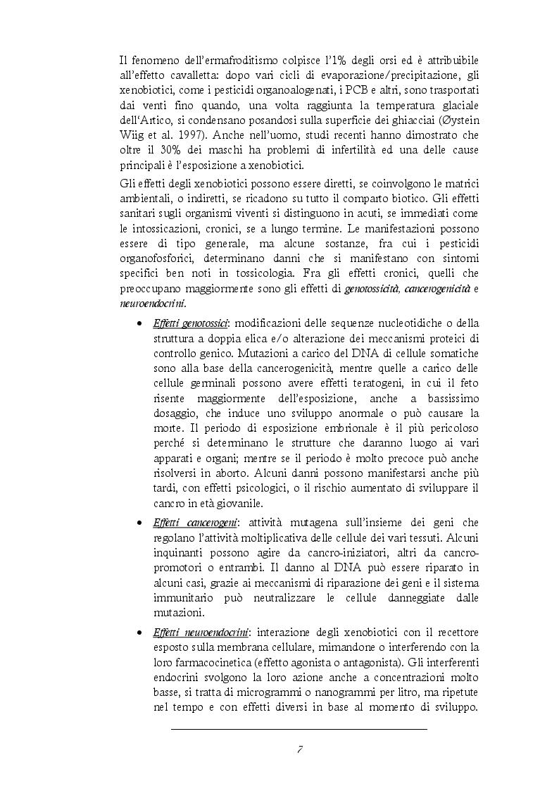 Estratto dalla tesi: Test di genotossicità in Vicia Faba su sedimenti dei torrenti nella Valdinievole
