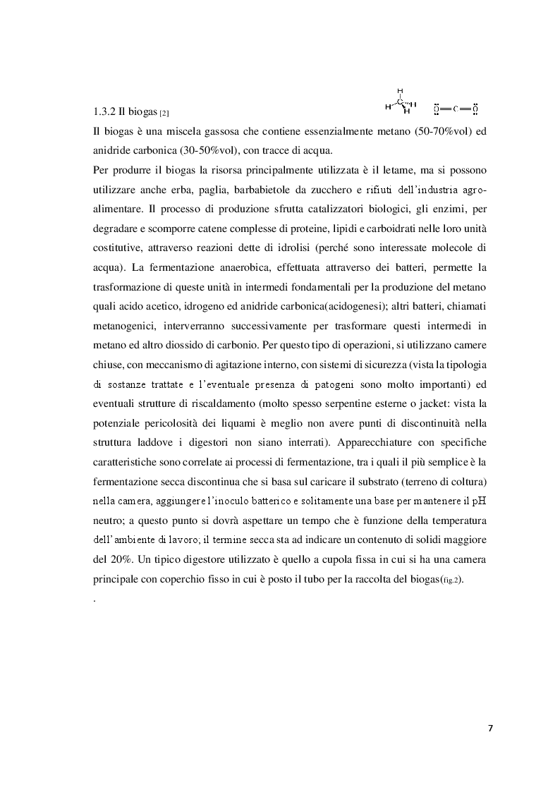 Estratto dalla tesi: Produzione di biodiesel da microalghe