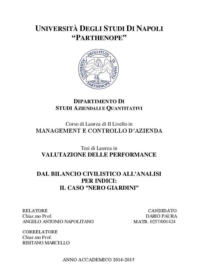 Anteprima della tesi: Dal bilancio civilistico all'analisi per indici: il caso Nero Giardini, Pagina 1