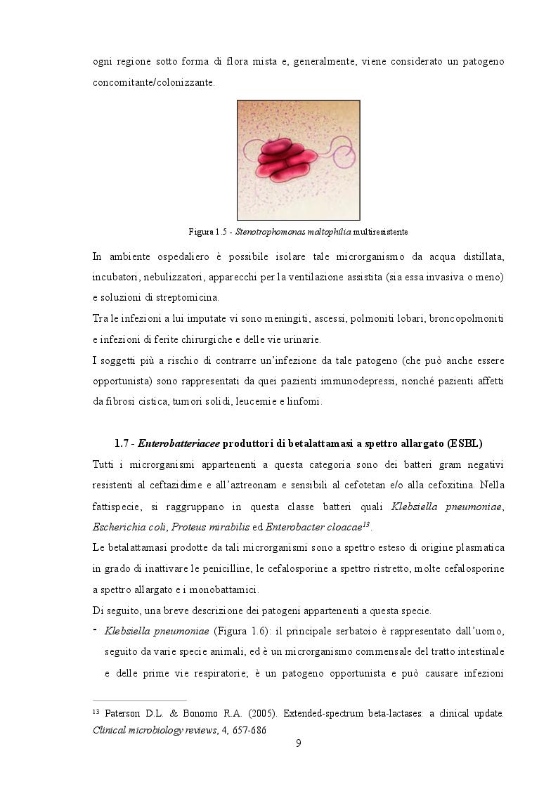 Estratto dalla tesi: Il ruolo dell'infermiere nella gestione delle infezioni da germi multiresistenti