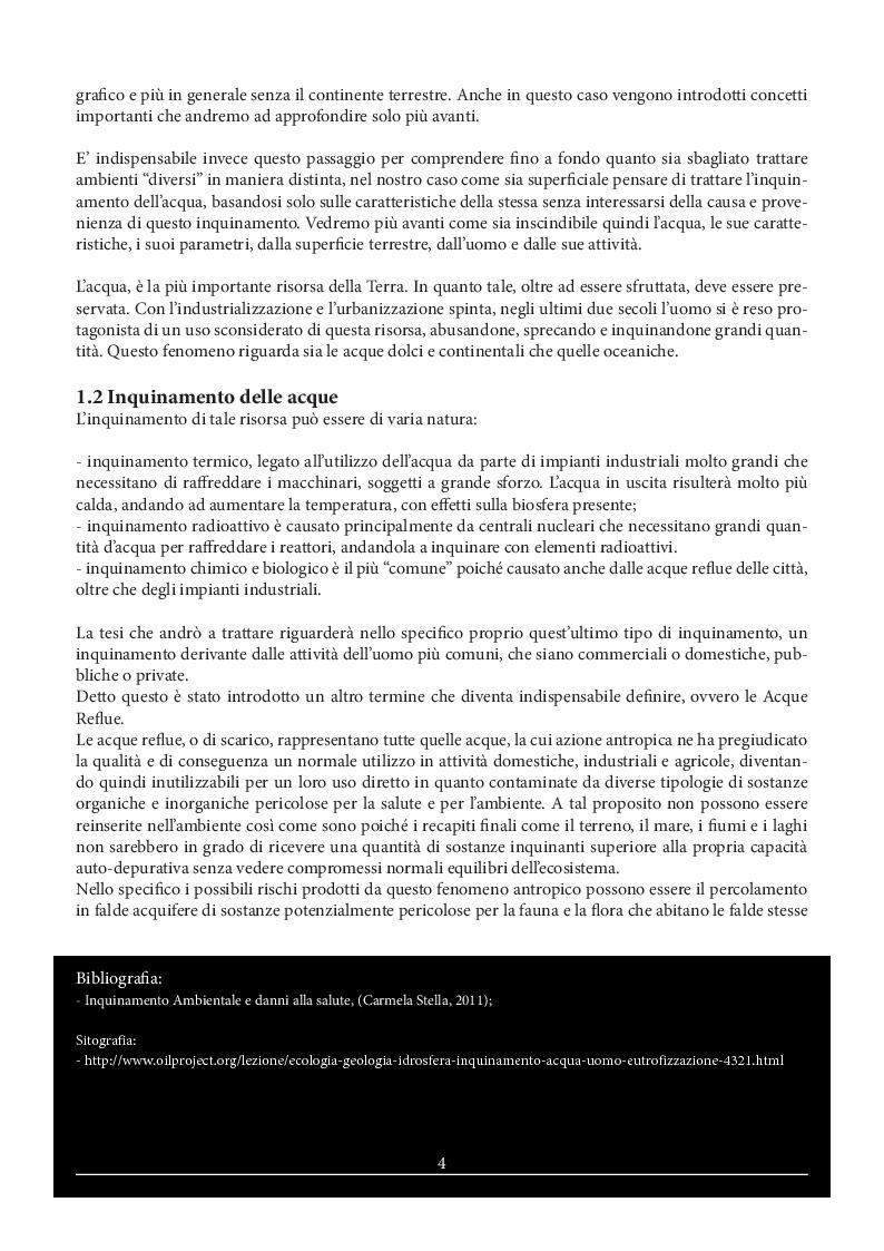 Estratto dalla tesi: L'Inquinamento delle Acque Reflue - Il Fiume Tevere