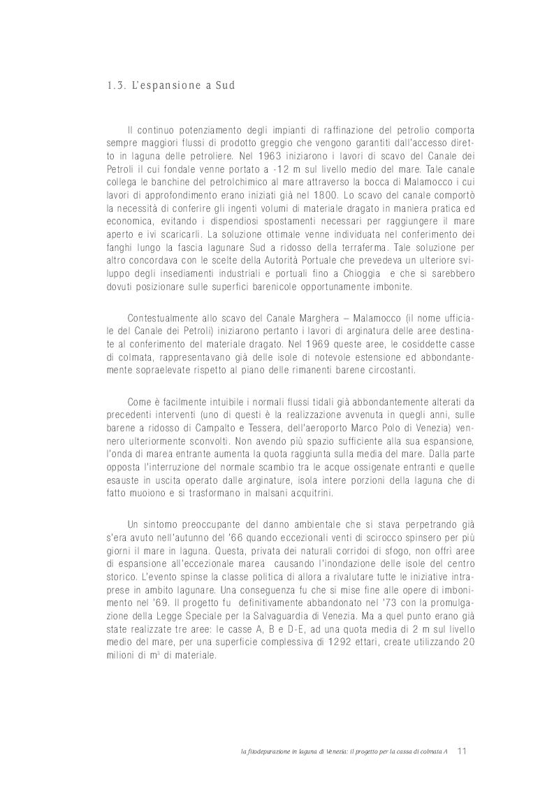 Estratto dalla tesi: La Fitodepurazione in Laguna Di Venezia: il Progetto per la Cassa di Colmata A