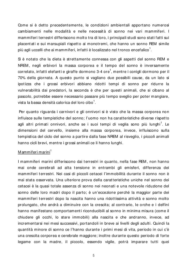 Estratto dalla tesi: Breve studio sul sonno: dalla neurofisiologia all'ambiente